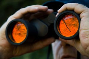 Tips To Hire Private Detectives